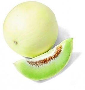 melon-1