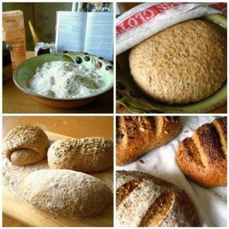 Tipos de harinas y panes