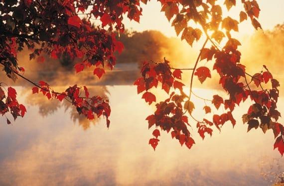 Puesto de sol en otoño