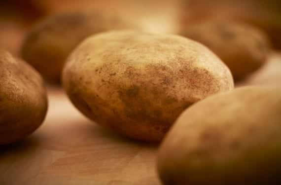 Patata