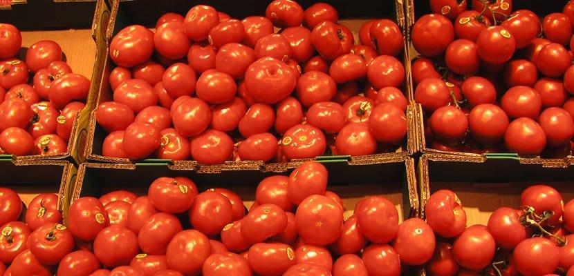 Tomates en cajas