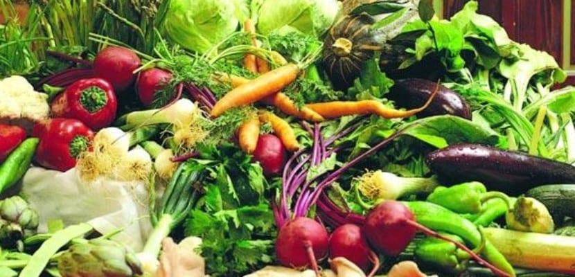 verduras-crudas