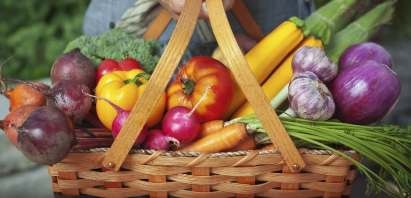dieta frutas