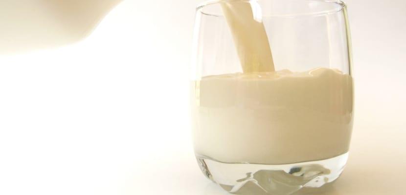 vaso-de-leche