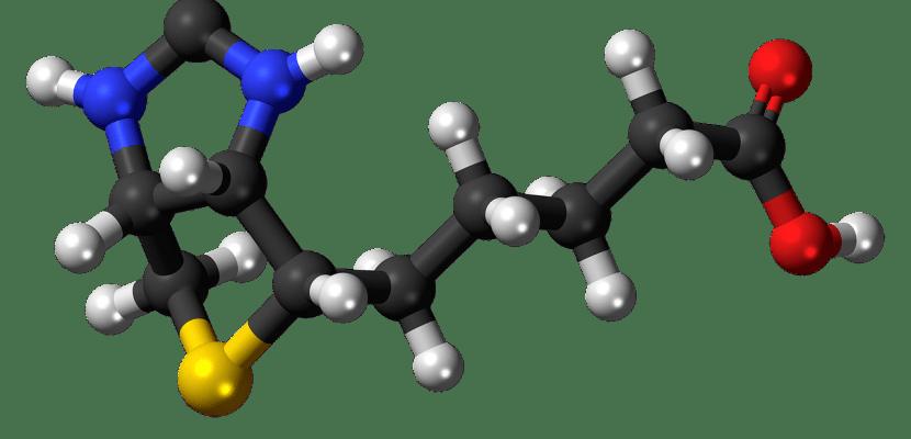 moléculas