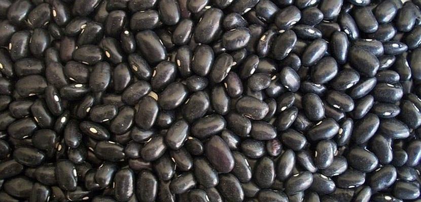 Alubias negras