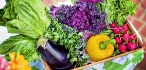 Cesta de verdura
