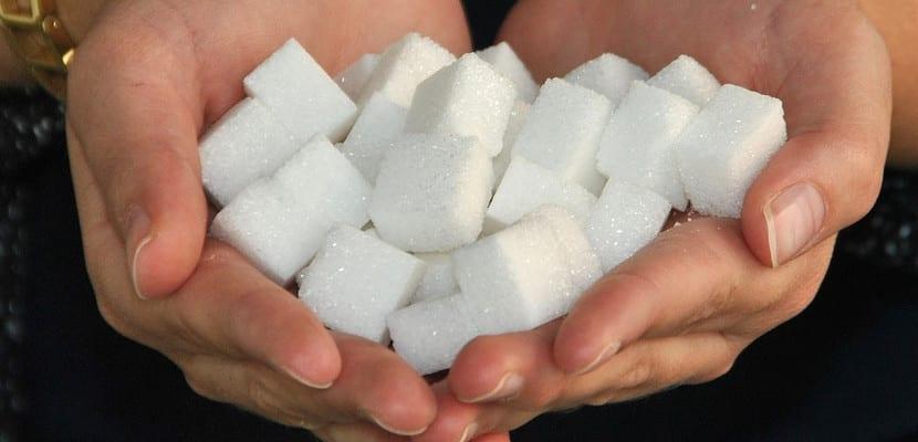 Terrones de azúcar en las manos