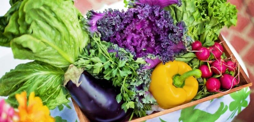verduras dieta okinawa